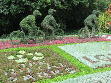 Topiary and carpet bedding in St James's park to mark the Tour de France in London 2007