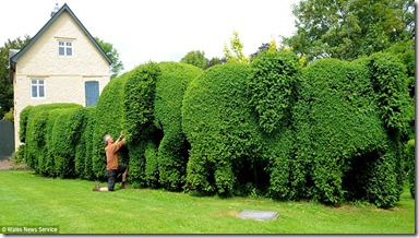 Topiary folly