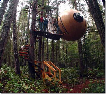 free spirit sphere tree-house